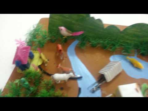 Sources of Water Pollution - Science Project