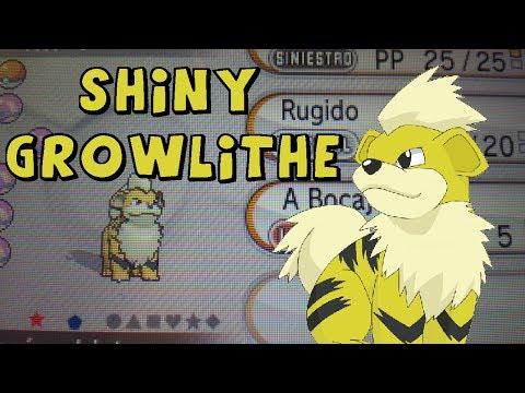 [LIVE!] Shiny Growlithe 27 huevos Pokémon X (via método Masuda)