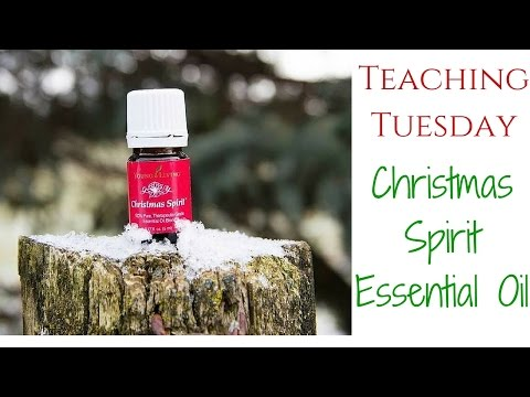 All About Christmas Spirit: Teaching Tuesday