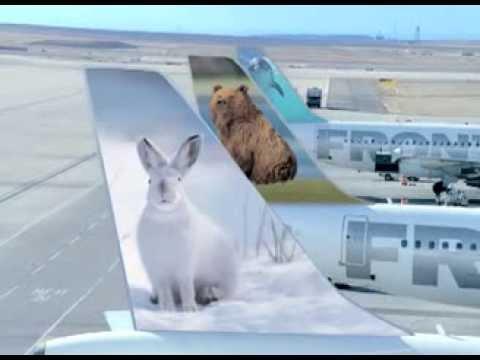 FlyFrontier - Vacation