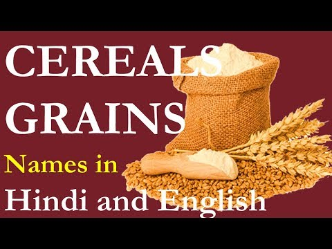Names of cereals and grains in Hindi and English - अनाज के नाम