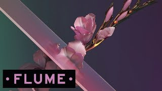 Flume - Never Be Like You feat. Kai