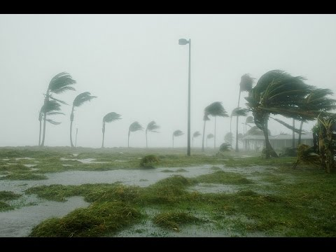 How to Prepare for a Hurricane - Top 10 Hurricane Items - Lessons learned SHTF