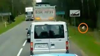 Idiot Driver Won