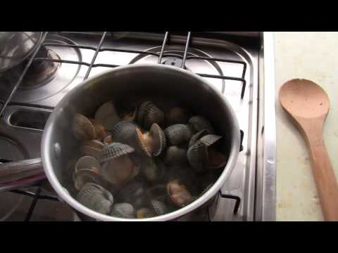 Cockle picking & cooking in France - part 2