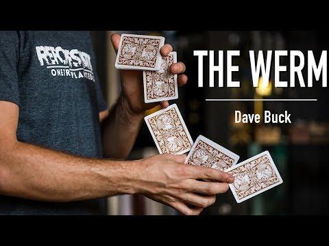 THE WERM - Beginner Tutorial by Dave Buck