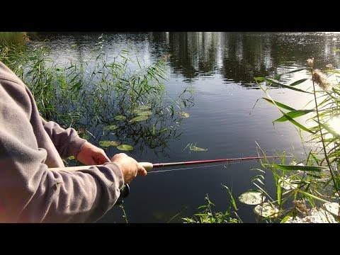 Lure Fishing for Pike at Blue Lagoon (Hull & District Anglers Association)