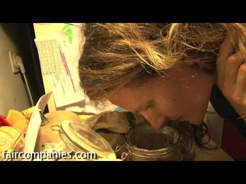 Fermented pet: care and feeding of sourdough starter