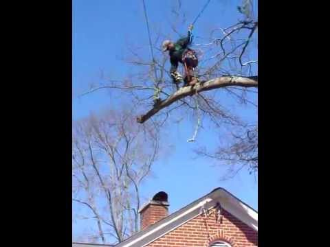 Cutting a limb safely over a house