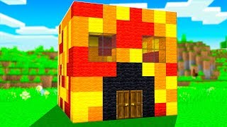 I Built My First MINECRAFT House!