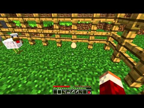 Minecraft Lets Play Survival Episode 11-The Chicken Pen