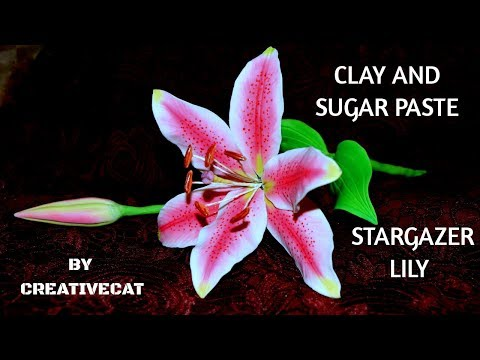 Clay and Gumpaste/Sugar paste Stargazer Lily flower without cutters and veiners