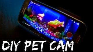 DIY PET CAM: Watch from Anywhere!
