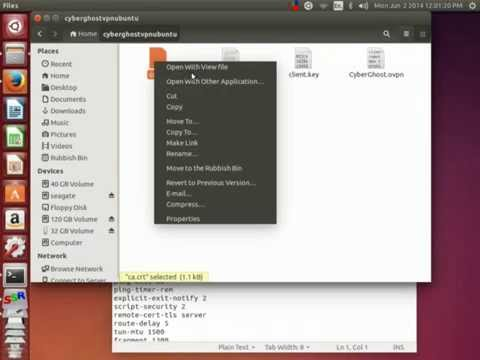 how to setup openvpn on Linux Distros using cyberghost
