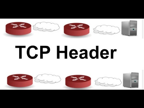TCP Header: Networking & TCP/IP Tutorial. TCP/IP Explained