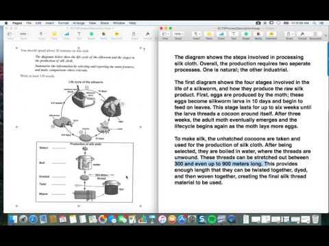 IELTS Process Description