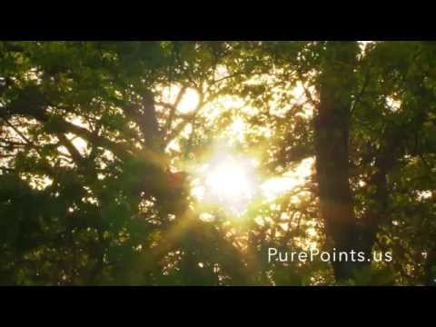 Pure Points RCI Outer Banks