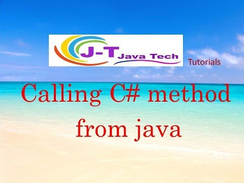 How call dll in java