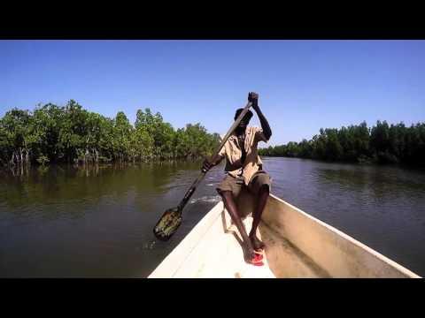 Makasutu Tropical Forest Park Gambia
