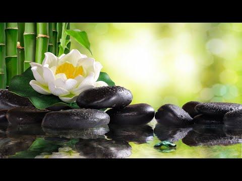 8 Hours of Soft Sleep Music: Relaxing Piano Music, Deep Sleeping Music, Meditation Music ★102