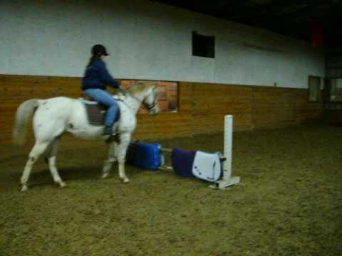 Scary horse eating jumps.