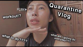 Quarantine Vlog // + easy home workout routine + GOOD NEWS!