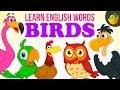 Birds Pre School Learn English Words Spelling Video For Kids