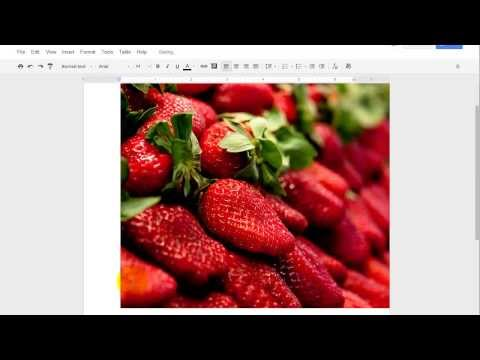 Google Documents - Insert Image by URL