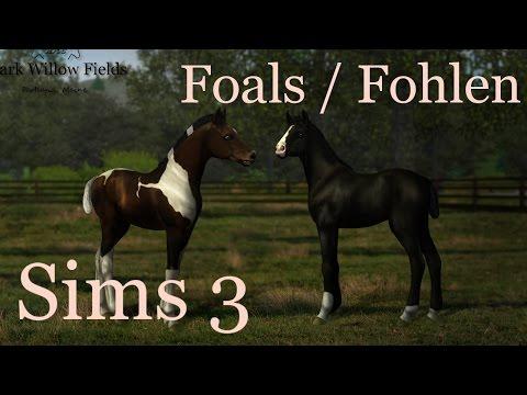 The Sims 3 - Our foals! / Foal season 2017 [Dark Willow Fields stud]