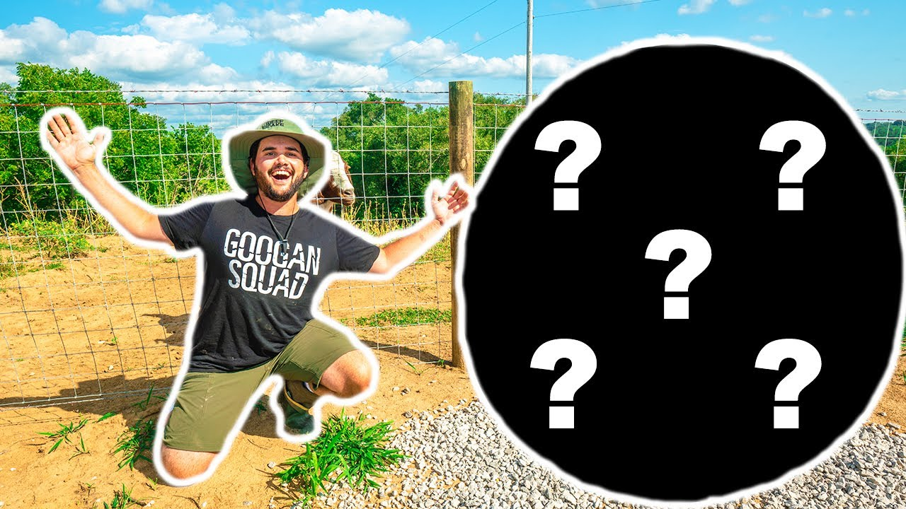I Bought the MEANEST Animal at the AUCTION for My BACKYARD FARM!!! (Bad Idea)