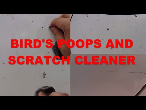 Cheapest way how to remove bird poops (baking soda)