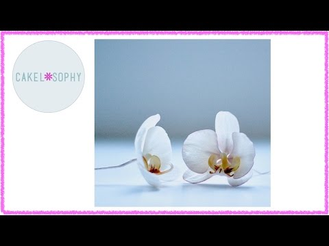 Making Elegant Sugar Orchid