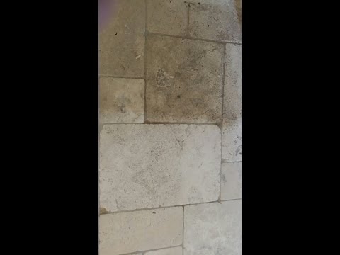 Best Limestone Tile And Grout Floor Cleaning near Winter Garden