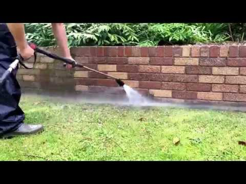 Moss removal off a garden wall