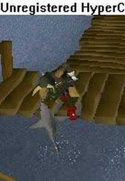 Me Catching A Shark With My Hand On Runescape