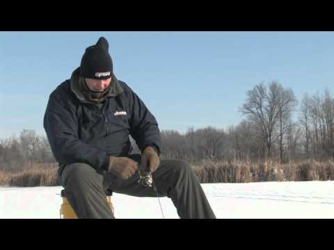 Bluegills Through the Ice in Very Shallow Water
