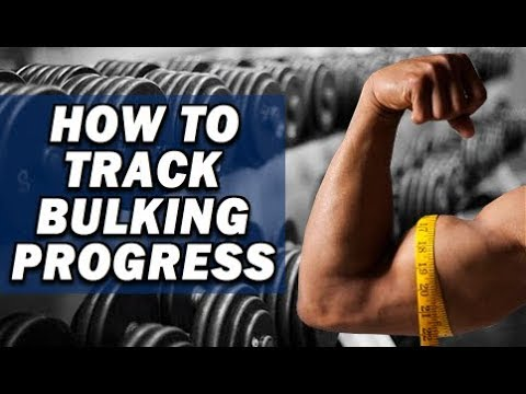 How To Track Progress During A Bulking Phase