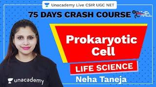 75 Days Crash Course | Prokaryotic cell | Life Science | Neha Taneja