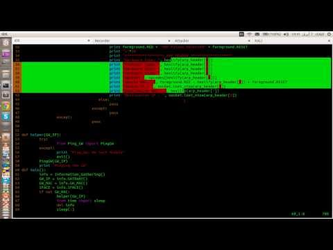ARP Poisoning Detection Tool - Python Raw Sockets - Practical