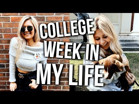 college week in my life: classes, frat party, my big!