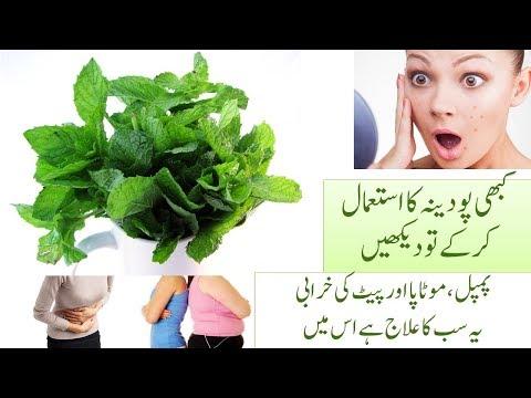Acne and Pimples Treatment, Abdomen Problem, Obesity Treatment Home Remedies, Paper Mint Benefits