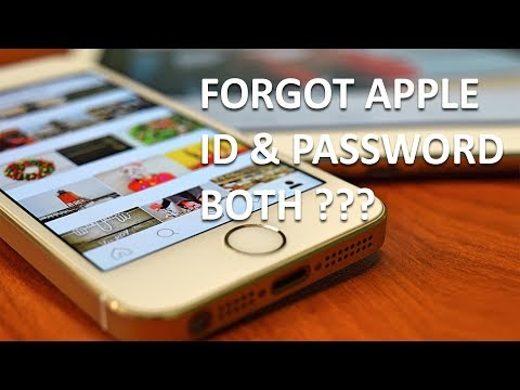 What if you forgot your apple and password both