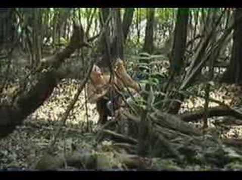 Amazon Survivor: SHELTER (Clip4)