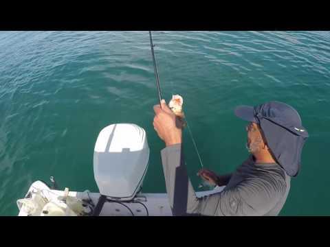 FISHING REEL SMOOTH