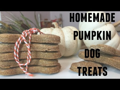 Simple Homemade Pumpkin Dog Treats   2 Ingredients