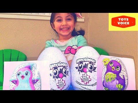Hatchimals Surprise Egg Unboxing video | Toys Voice