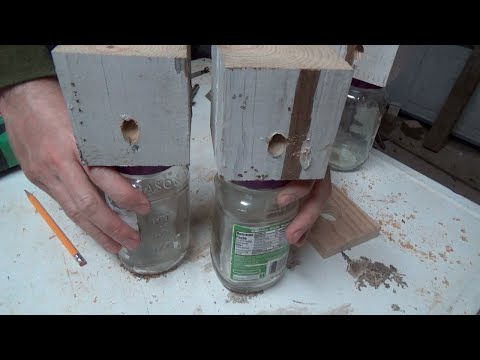 Let's Make a Super Easy Carpenter Bee Trap | How To