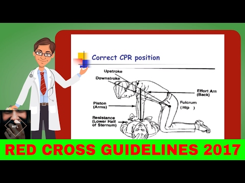 Basic life support 2017 Adult- RED CROSS guidelines. BLS. How to CPR in 2017