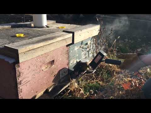 Oxalic Acid Vapour Treatment with a ProVap110- a Canadian Beekeeper's Blog