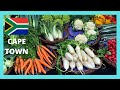 Download CAPE TOWN, EXPLORING the FOOD MARKET on ST GEORGE'S STREET (SOUTH AFRICA) MP3,3GP,MP4